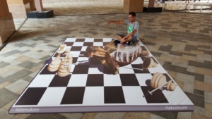 "3d street painting ""Checkmate!"""