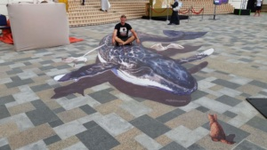 """3d street painting """"Whale"""""""