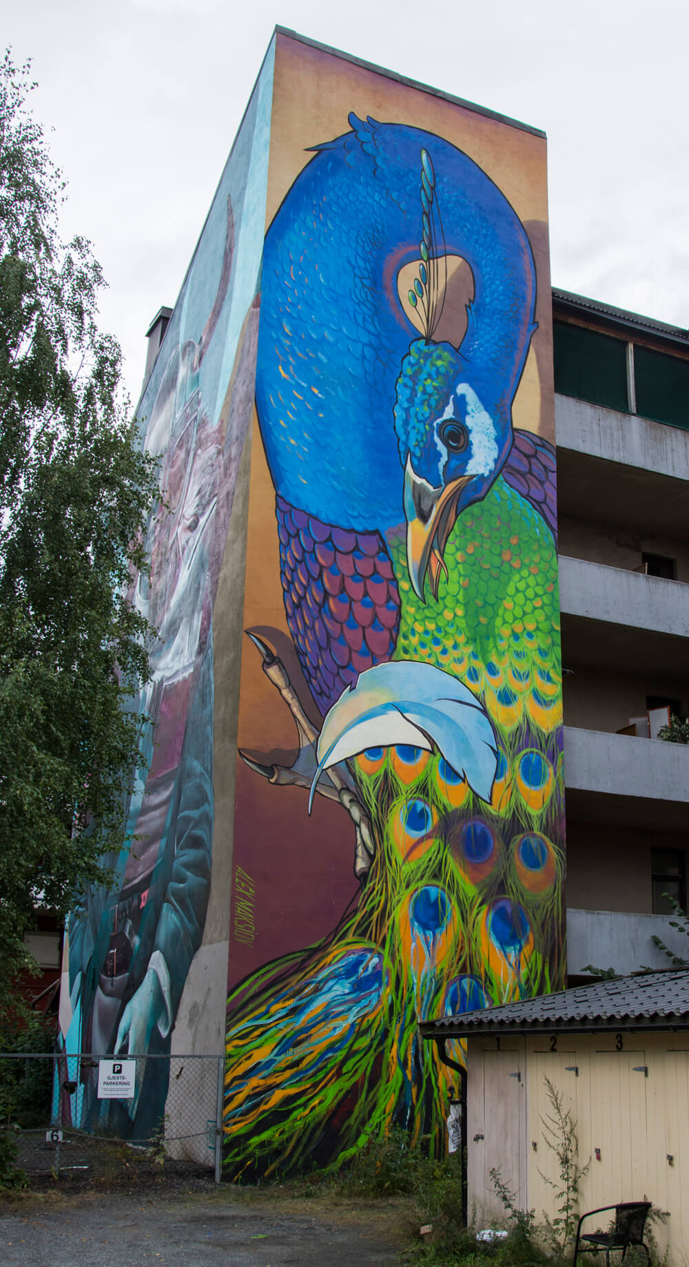 "Image result for Mural ""Envy"" in Drammen, Norway by Alex Maksiov."