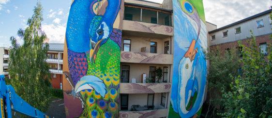 """Full version of mural """"Envy"""""""